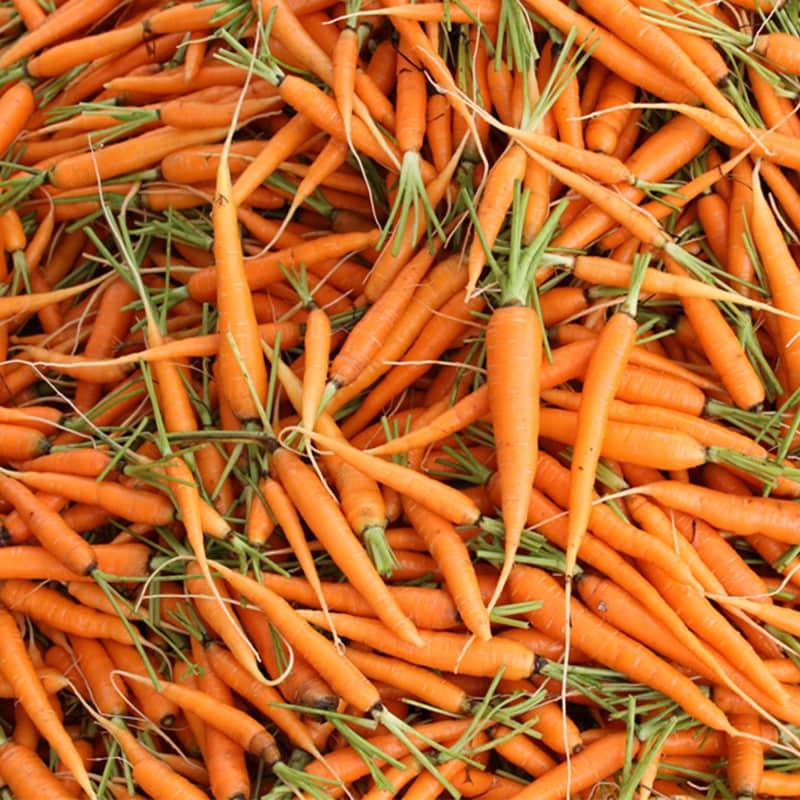 แครอท